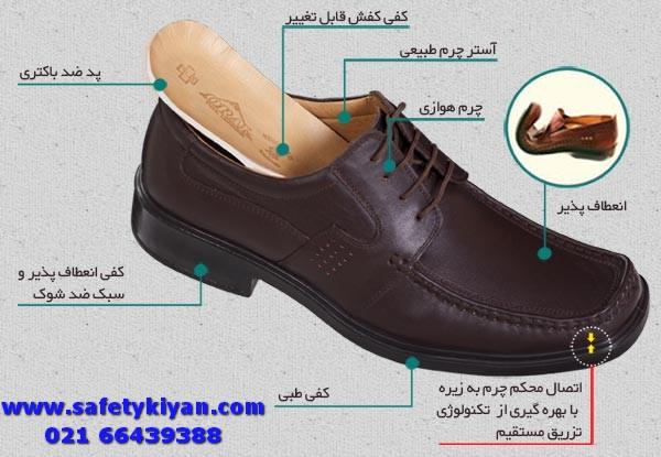 oral shoe